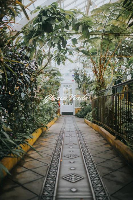 Мусульманский (мавританский) сад